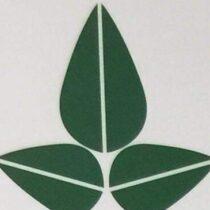 Profile picture of Seceon-Inc